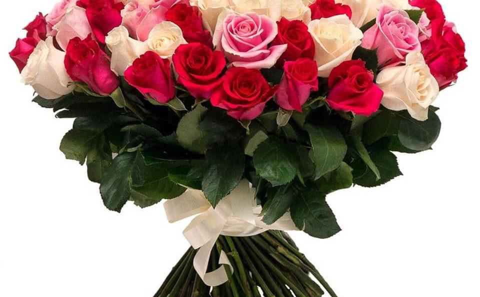 Mesaj de felicitare cu ocazia sărbătorii profesionale – Ziua lucrătorului Serviciului Fiscal