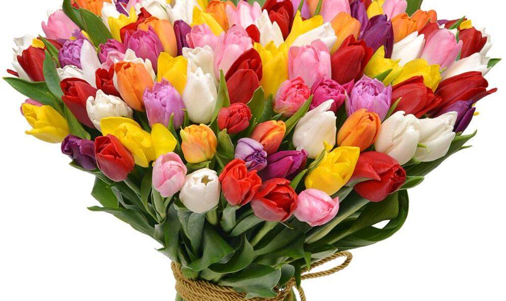 Mesaj de felicitare cu prilejul Zilei Internaţionale a Femeii – 8 martie