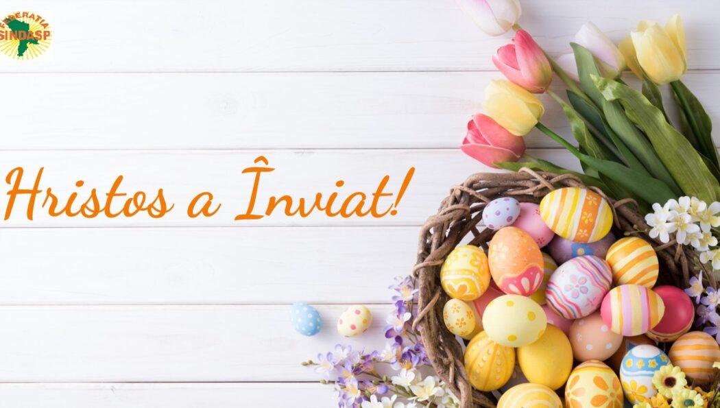 Mesaj de felicitare cu prilejul Sfintelor Sărbători de Paști